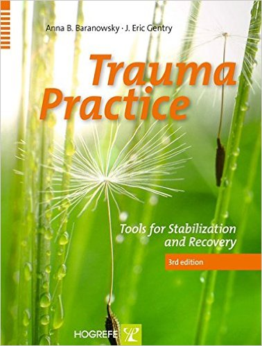 Trauma Practice : Tools for Stabilization and Recovery 3rd Edition